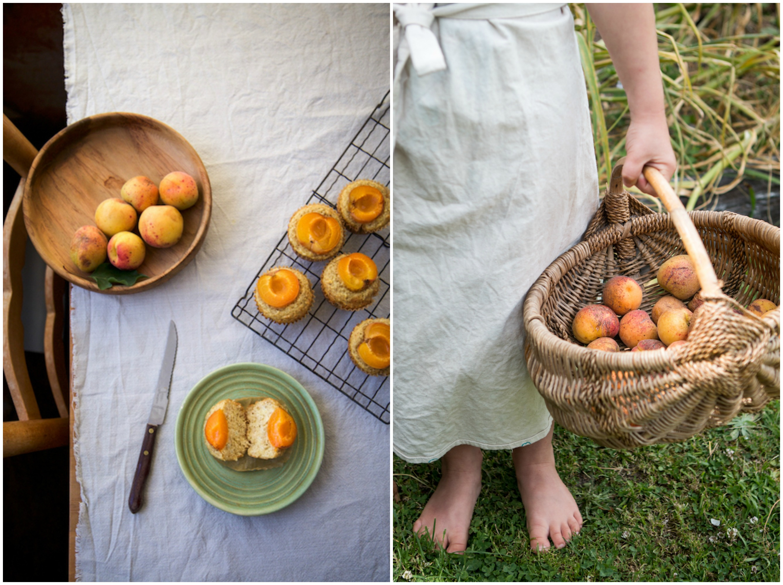 Apricot Collage